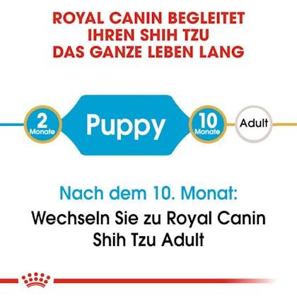 RC-BHN-PuppyShihTzu_Trockennahrung_2-Monate_DE