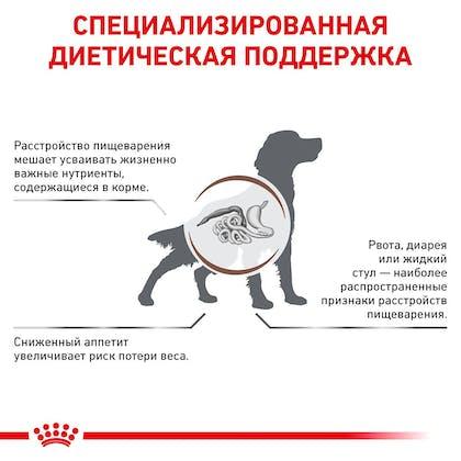 RC-VET-DRY-DogGastro-Eretailkit-B1_3-RU