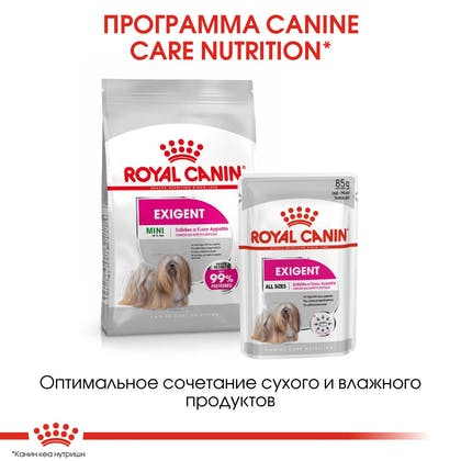 RC-CCN-ExigentMini-CV-Eretailkit-6_rus