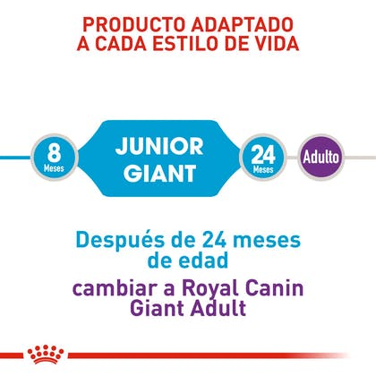 GIANT JUNIOR COLOMBIA 3