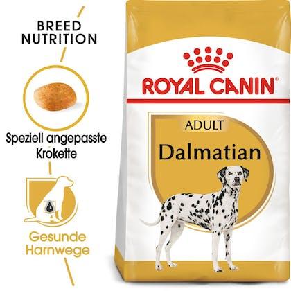 RC-BHN-Dalmatian-Trockennahrung_Hero-Image_DE