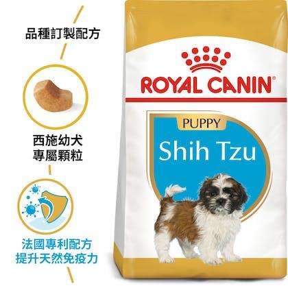 BHN_PuppyShihtzu