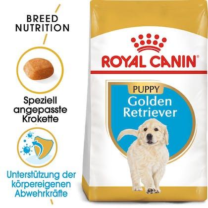 RC-BHN-Puppy-Golden-Retriever-Trockennahrung_Hero-image_DE
