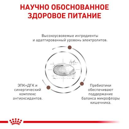 RC-VET-DRY-DogGastro-Eretailkit-B1_4-RU