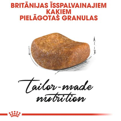 RC_FBN_BritishSH_CV_Eretailkit_lv_LV (2)