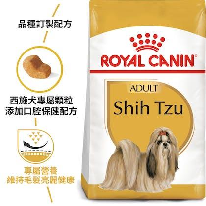 BHN_Shihtzu