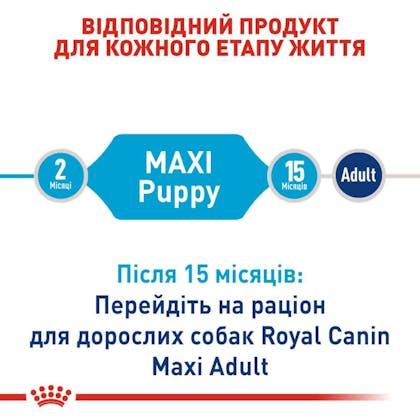 RC-SHN-PuppyMaxi_2-UA.jpg