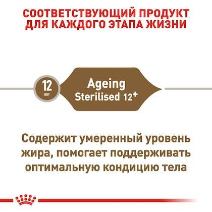 RC-FHN-AgeingSterilised12_2-RU.jpg