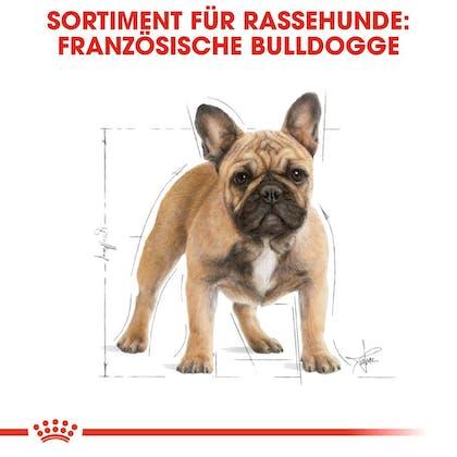 RC-BHN-FrenchBulldog-Trockennahrung_Sortiment_DE