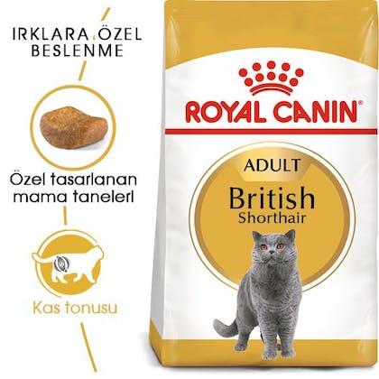 Royal Canin British Shorthair Adult Kedi Maması 7