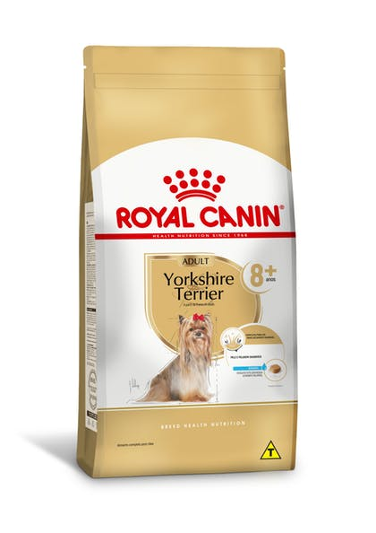 166-BR-L-Yorkshire-Terrier-8+-Dry-Yorkshire-Terrier-Breed-content