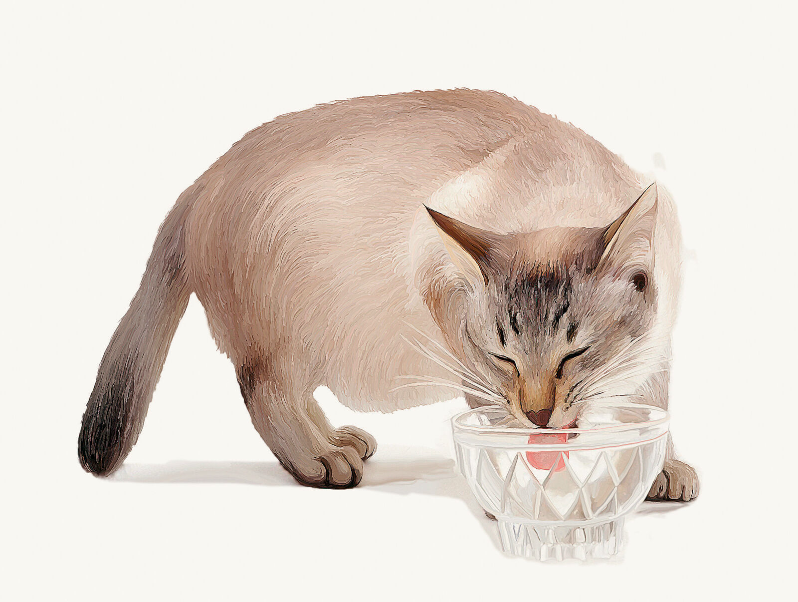 Figure 5a. In a safe, home situation, whiskers can touch the edge of the food or water bowl.