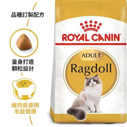 布偶成貓RD32_EC產品圖