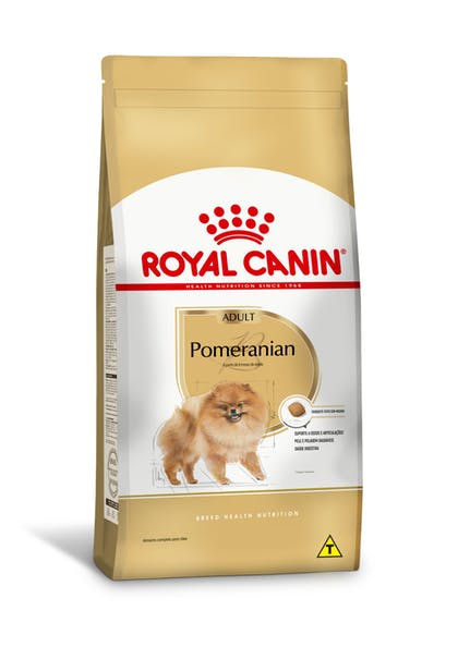 166-BR-L-Pomeranian-Dry-Pomeranian-Breed-content