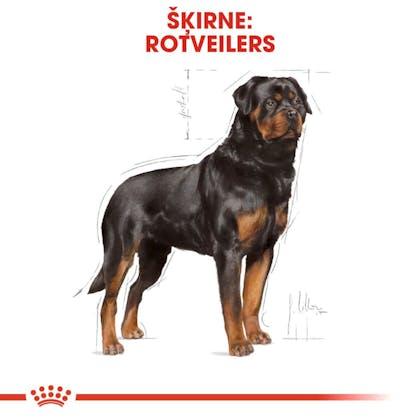 RC_BHN_Rottweiler_CV_Eretailkit_1_lv_LV