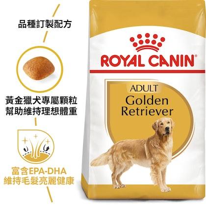 BHN_GoldenRetriever