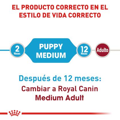 RC-SHN-PuppyMedium-CV-EretailKit-1