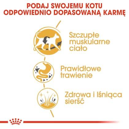 RC-FBN-Siamese-CV-Eretailkit-3-pl_PL