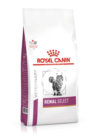 VHN-VITAL SUPPORT-RENAL SELECT CAT DRY-PACKSHOT