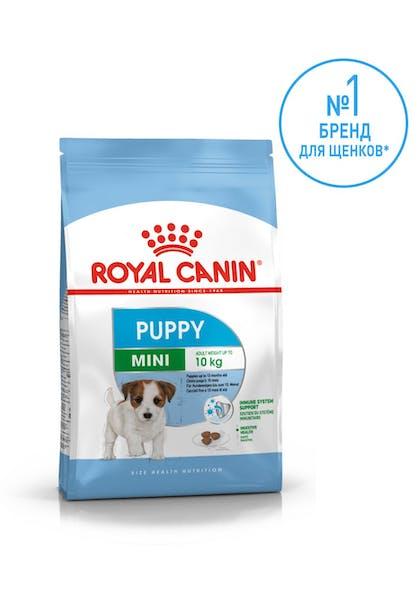 mini puppy brand number 1