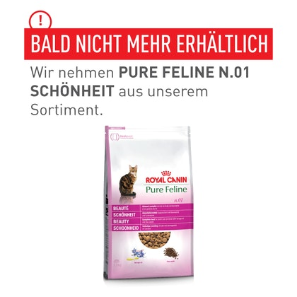 DACH-Transfer_pictures_Pure_Feline-1