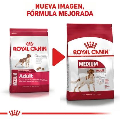 RC-SHN-AdultMedium-CV-EretailKit-5