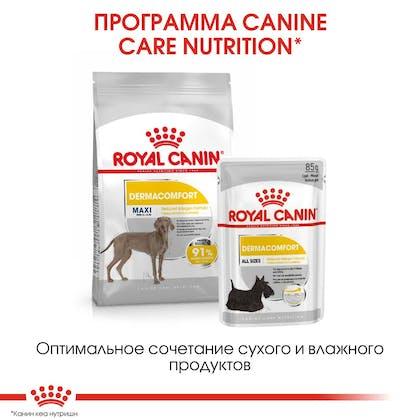 RC-CCN-DermaMax-CV-Eretailkit-6_rus