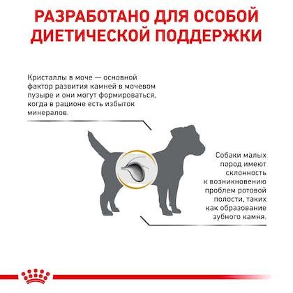 RC-VET-DRY-DogUrinarySOSD-Eretailkit-B1_9