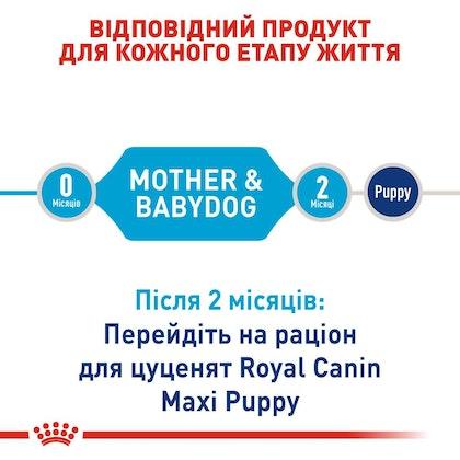 RC-SHN-PuppyMaxiStarter_2-UA.jpg