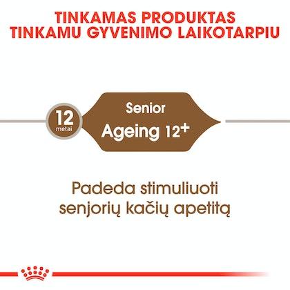 RC-FHN-Ageing12-CV-Eretailkit-1-lt_LT