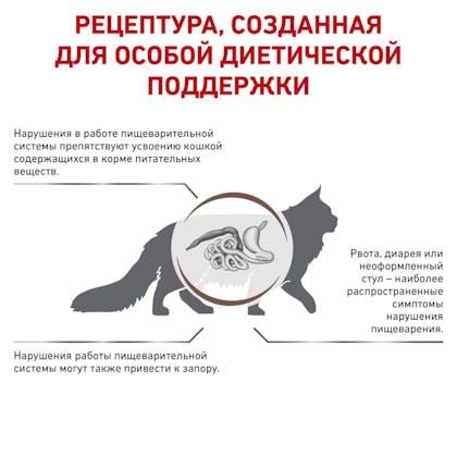 RC-VET-DRY-CatGastroFR-BrandFlagship_rus3