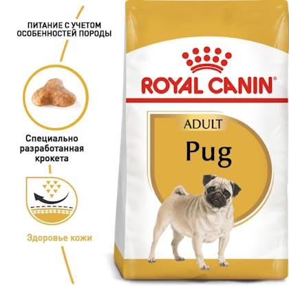 RC-BHN-Pug_1-RU.jpg
