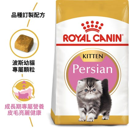波絲貓幼貓KP32_EC產品圖