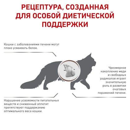 RC-VET-DRY-CatGastroHE-BrandFlagship_rus3