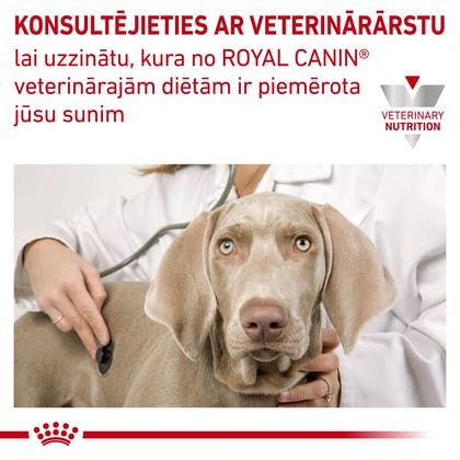 RC-VET-DRY-DogUrinarySOSD-CV-Eretailkit-6-lv_LV