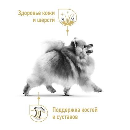 RC-SPT-DRY-PomAD_rus3
