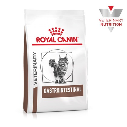 VHN-BrandFlagship-Hero-Images-Gastrointestinal Cat Dry-B1