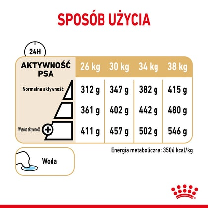 RC-SPT-DRY-Lab5-CV-4-pl_PL