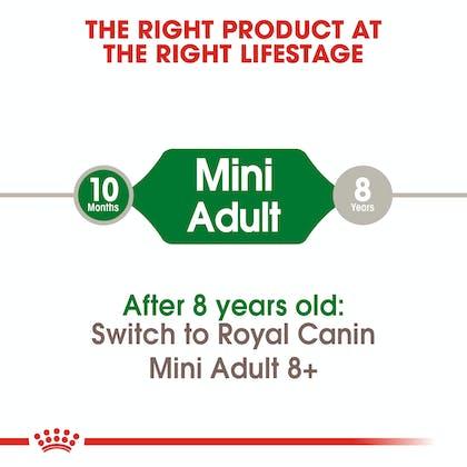 SHN-AdultMini-CV-EretailKit-1