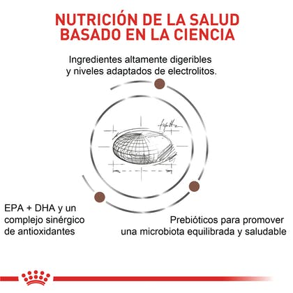 VHN GASTROINTESTINAL MODERATE CALORIE COLOMBIA 4