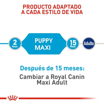 MAXI PUPPY COLOMBIA 3