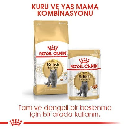 Royal Canin British Shorthair Adult Kedi Maması 4