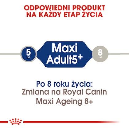 RC-SHN-AdultMaxi5-CV-EretailKit-1-pl_PL