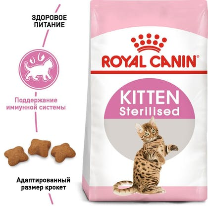 RC-FHN-KittenSterilised_1-RU.jpg