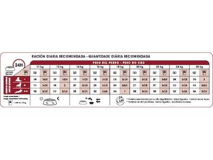 AR-L-Tabla-Racionamiento-Medium-Adult-Size-Health-Nutrition-Seco