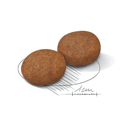 AR-L-Croqueta-Medium-Adult7+-Size-Health-Nutrition-Seco