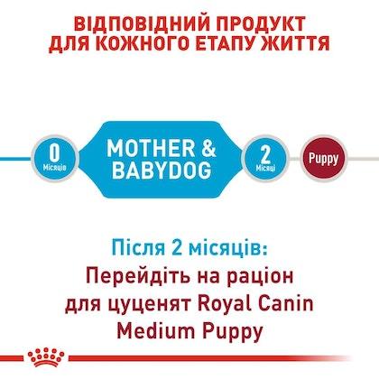 RC-SHN-PuppyMediumStarter_2-UA.jpg