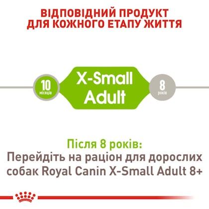 RC-SHN-AdultXSmall_2