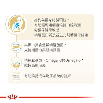 豹貓成貓BG40_產品賣點