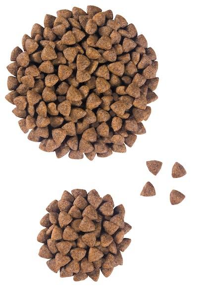 VCN 2011 - Kibbles and wet diet - ST-PED-VCND-CROC